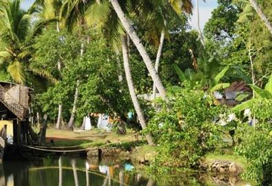 Indien Kerala Backwaters