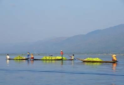 Myanmar Inle See