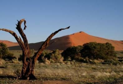 Namibia Sossusvlei Düne