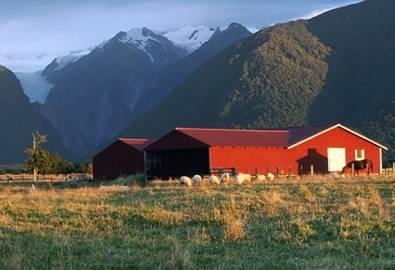 Neuseeland Fox Glacier Farm