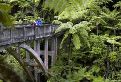 AT44-Whanganui-National-Park-Whanganui-Chris-McLennan
