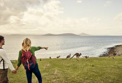 AU_couple_spending_time_in_nature_with_kangaroos_iStock-984748190