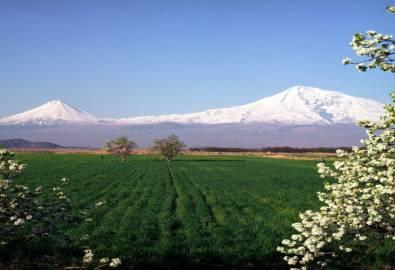 Armenien - Ararat