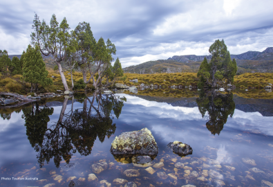 Cradle Mountain West