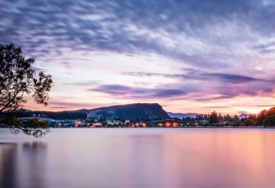 Header_Neuseeland_OT_Wanaka_Tree_shutterstock_667474999