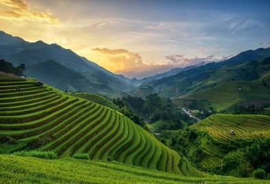 Indonesien Bali Rice Fields on Terrace