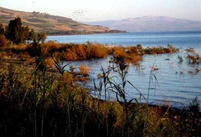 Israel See Genezareth