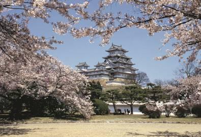 Japan-Silberreiher-Burg_isoCoated V2 300_CMYK
