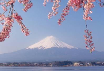 Japan_Mount Fuji