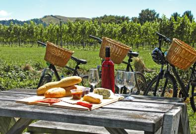 NZ_Bikes_and_Picnic_shutterstock_99837836