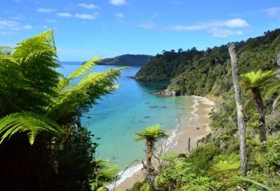 NZ_Steward_Island_Küste-von-oben_shutterstock_164701961_05JUN2018
