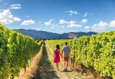 NZ_Weinregion_Neuseeland_shutterstock_679336963_klein_05JUN2018