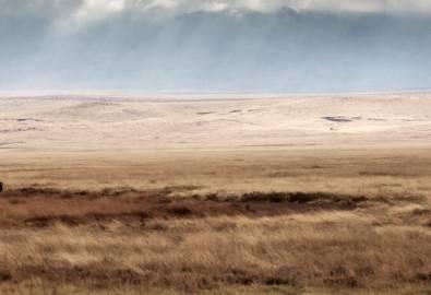 Tansania - Ngorongoro Krater