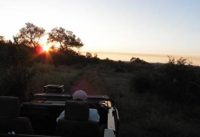Pirschfahrt im Private Game Reserve