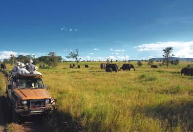 Safari Goers Watching Elephants on the Serengeti Plain, Tanzania
