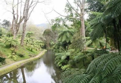 Azoren Furnas Terra Nostra Park
