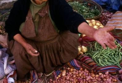 Bolivien Markt Verkäuferin