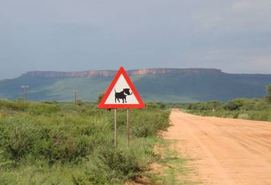 Namibia Verkehrsschild Achtung Warzenschwein