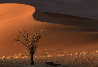 Namibia Sossusvlei rote Düne