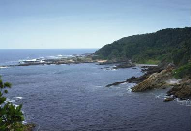 Südafrika Tsitsikamma Nationalpark