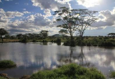 Tansania Serengeti See