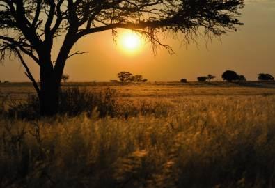 sunset lands