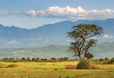 Uganda Queen Elizabeth Nationalpark